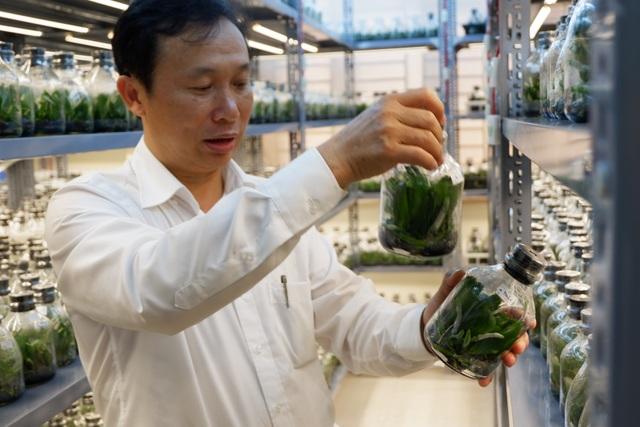 Hành trình hơn một thập kỷ với khát vọng đưa hoa Việt Nam vươn tầm thế giới của các nhà khoa học - 5