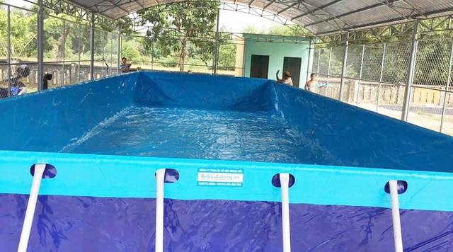 Trao tặng 5 bể bơi di động miễn phí của nhà sản xuất Hoàng Hải - 5