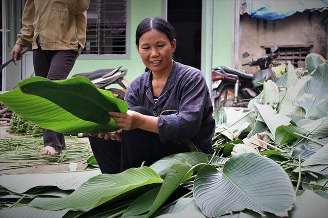 Hà Tĩnh: Thủ phủ lá dong Đức Thọ hối hả vào vụ Tết - 5
