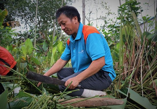 Hà Tĩnh: Thủ phủ lá dong Đức Thọ hối hả vào vụ Tết - 12
