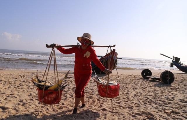 Quảng Trị:  Ngư dân thu hàng chục triệu đồng mỗi chuyến biển nhờ trúng cá bè - 1