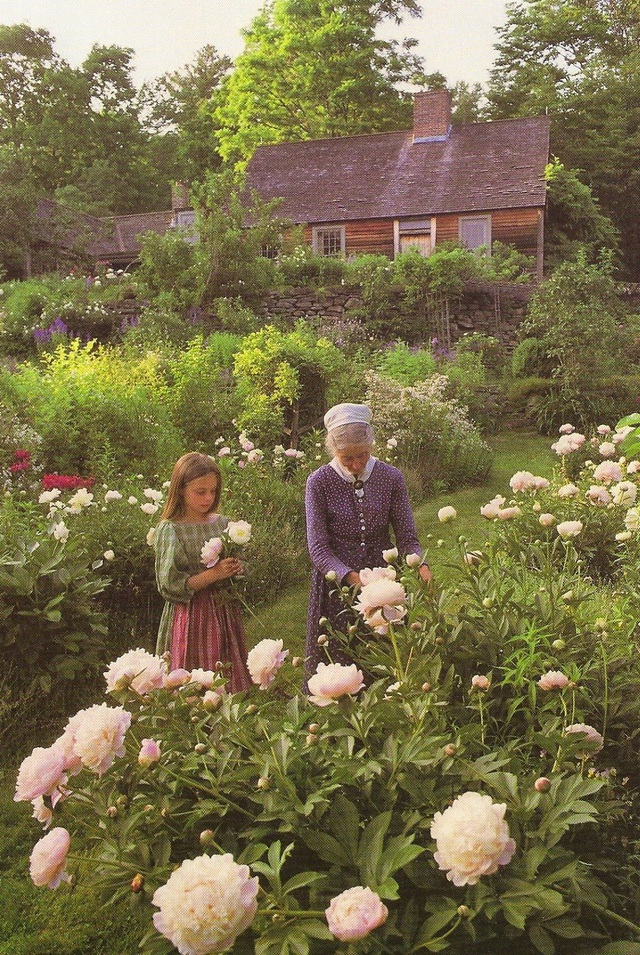 Sửng sốt với ngôi nhà hoa hồng đẹp như bước ra từ truyện cổ tích của cụ bà 92 tuổi - 5