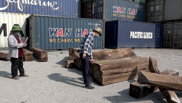 Bắt 50 container gỗ quý nghi nhập lậu từ Châu Phi - 2