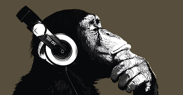Bất ngờ trước khả năng cảm thụ âm nhạc của tinh tinh - 1