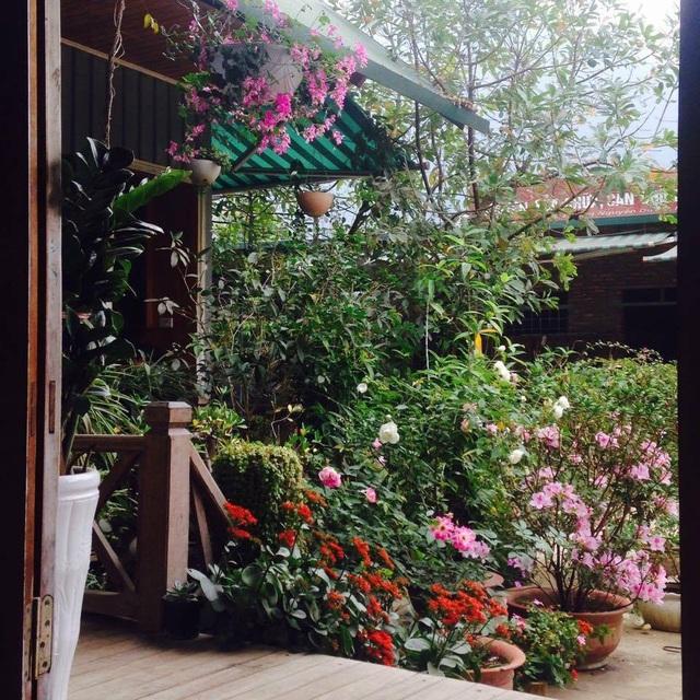 Cặp vợ chồng ở Hà Giang tự xây ngôi nhà hoa hồng đẹp như mơ giữa phố núi - 8