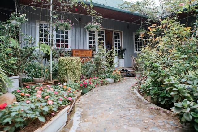 Cặp vợ chồng ở Hà Giang tự xây ngôi nhà hoa hồng đẹp như mơ giữa phố núi - 7