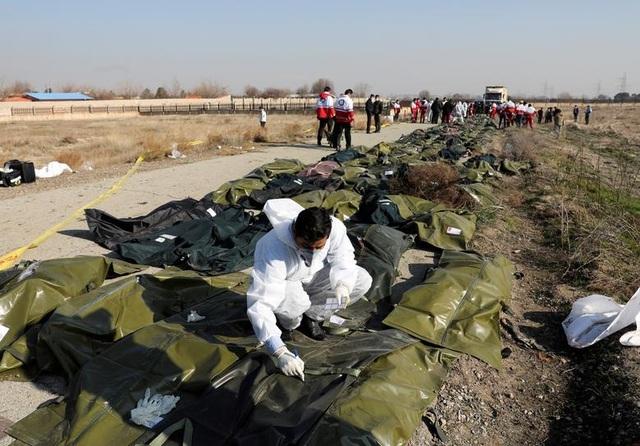Phản ứng của các nước sau khi Iran nhận bắn nhầm máy bay chở 176 người - 3