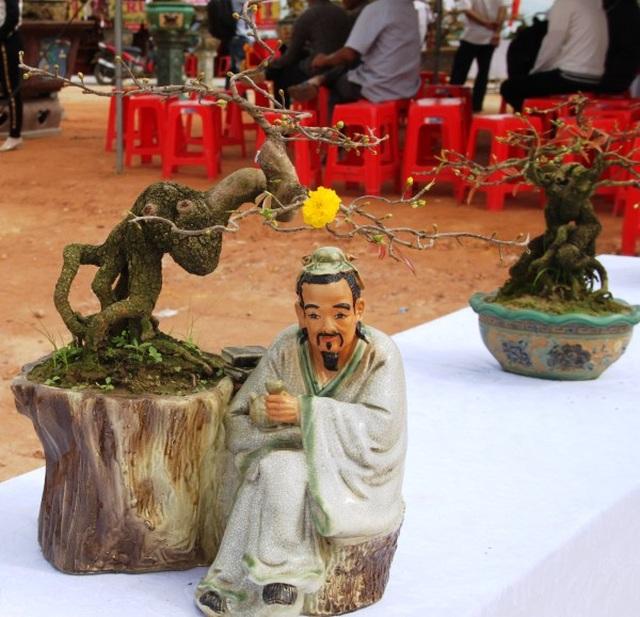 """Mãn nhãn với những tuyệt phẩm """"đại lão mai"""" ở Bình Định - 10"""