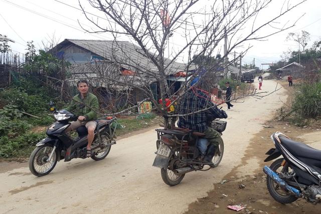 Đổ xô lên săn đào đá giá hàng chục triệu ở vùng biên Nghệ An  - 12