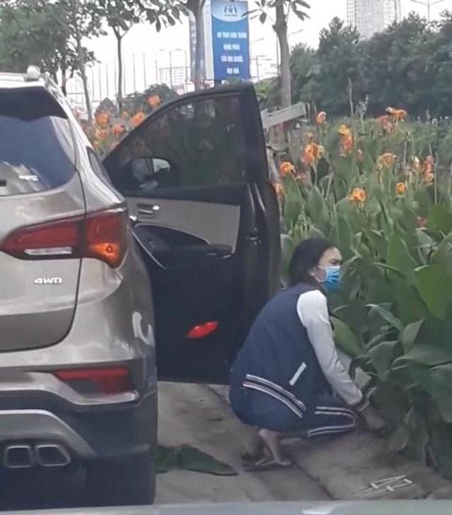 Nhổ trộm hoa nơi công cộng có thể dính án tù! - 1