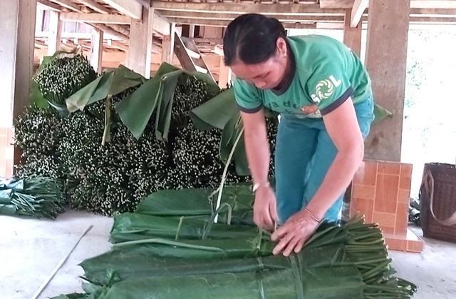 Thanh Hoá: Cận Tết, nhiều cụ bà gần 70 tuổi vẫn băng rừng, lội suối hái lá dong - 8
