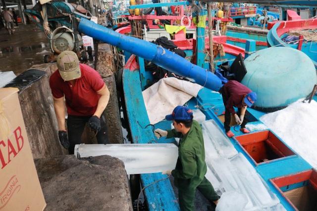 Gần 100 tàu cá nhộn nhịp ra khơi đón Tết trên biển - 2