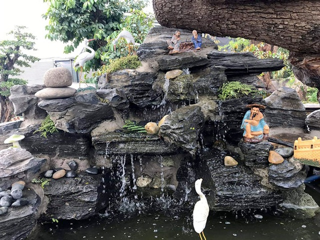 Độc đáo cây me trăm tuổi, được trả giá tiền tỷ tại Sài Gòn - 6