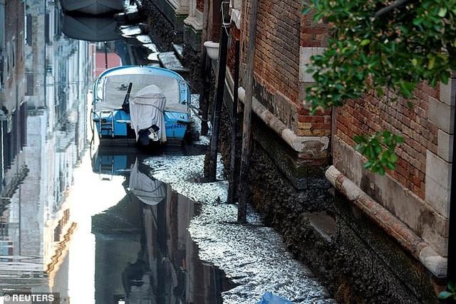 """Hết ngập lụt lại đến khô hạn, """"thánh đường du lịch"""" Venice khốn khổ vì... nước - 2"""