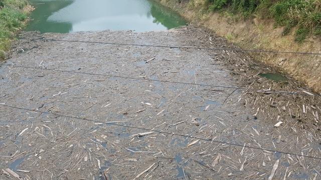 Bãi rác khổng lồ trên mặt hồ thủy điệnlớn nhất Bắc trung Bộ - 10