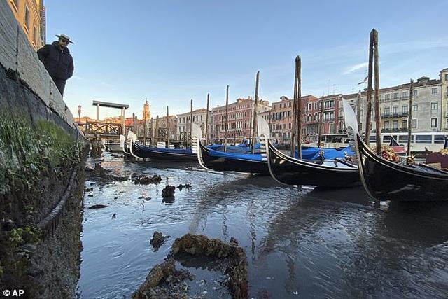 """Hết ngập lụt lại đến khô hạn, """"thánh đường du lịch"""" Venice khốn khổ vì... nước - 4"""
