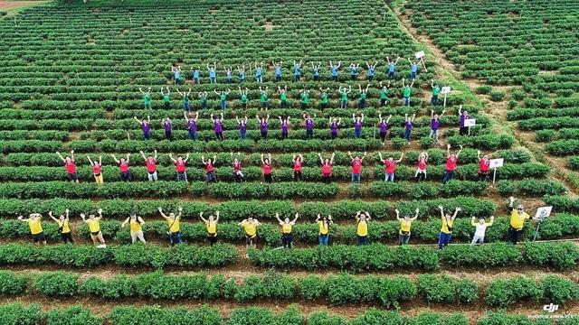 C.T Group hướng đến một môi trường làm việc tốt nhất Việt Nam - 2
