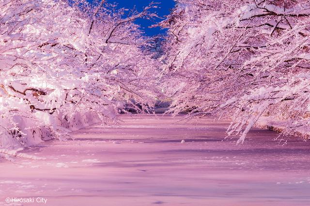 Những trải nghiệm tuyệt vời khi đến thăm Tohoku vào mùa đông - 5