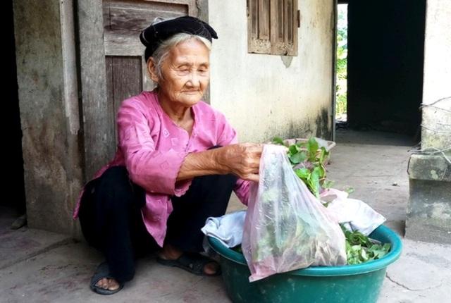 Bộ trưởng Bộ Nông nghiệp trồng cây ăn quả tại nhà cụ bà xin thoát nghèo - 5