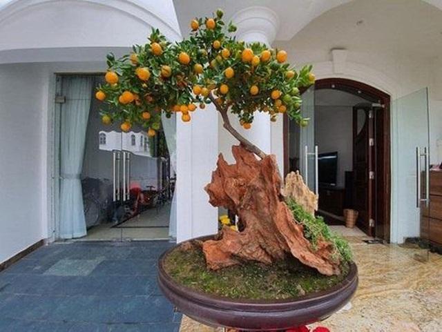 Sao Việt trang hoàng biệt thự, căn hộ rực rỡ đón Tết Canh Tý - 4