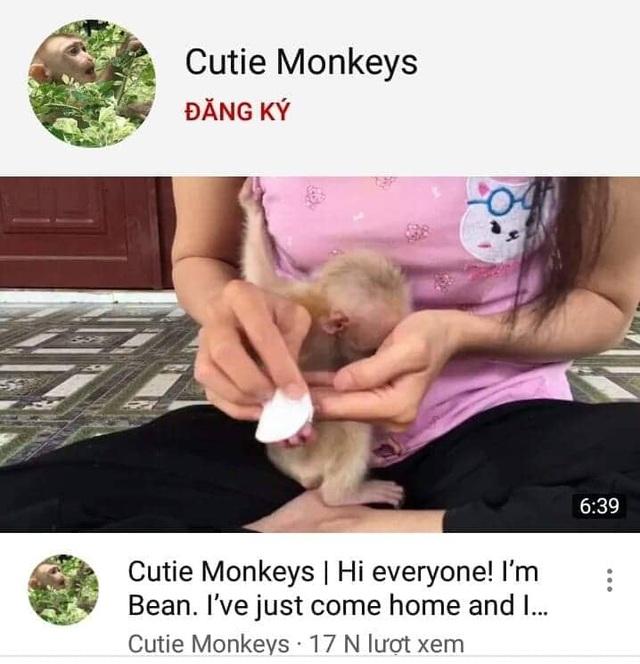 Đăng video nuôi nhốt khỉ lên Youtube, một phụ nữ bị cơ quan chức năng sờ gáy - 1
