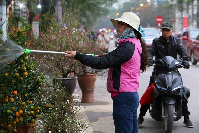Sôi động chợ hoa Tết lớn nhất Hà Nội - 12