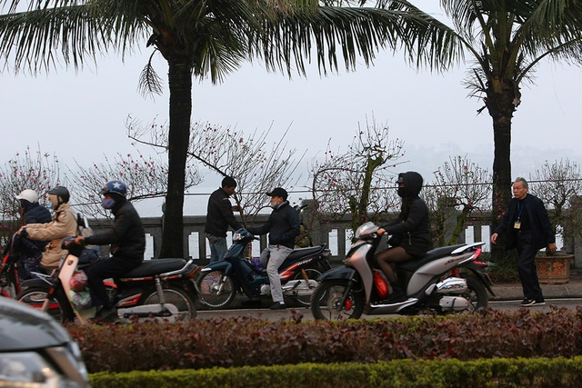 Sôi động chợ hoa Tết lớn nhất Hà Nội - 13