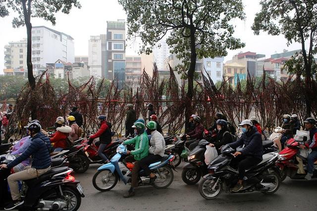 Sôi động chợ hoa Tết lớn nhất Hà Nội - 14