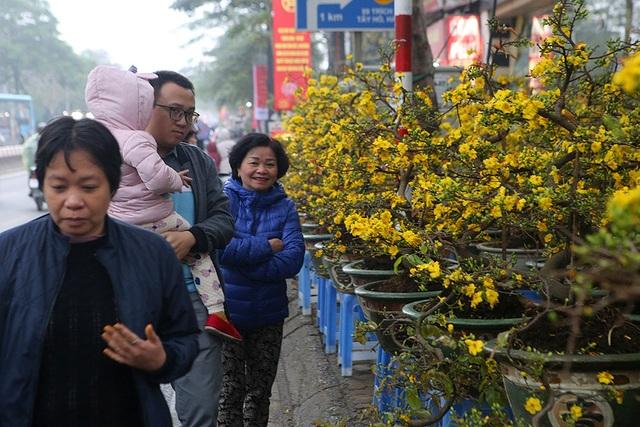 Sôi động chợ hoa Tết lớn nhất Hà Nội - 3