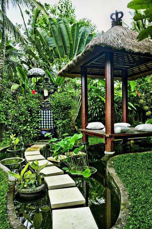 Những mẫu sân vườn xanh ngắt tràn đầy sức sống đón xuân - 5