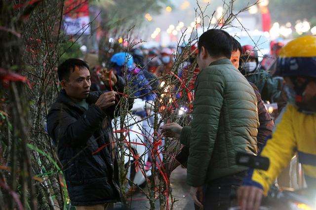 Sôi động chợ hoa Tết lớn nhất Hà Nội - 8