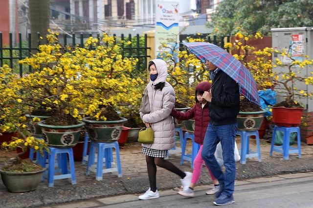 Sôi động chợ hoa Tết lớn nhất Hà Nội - 9