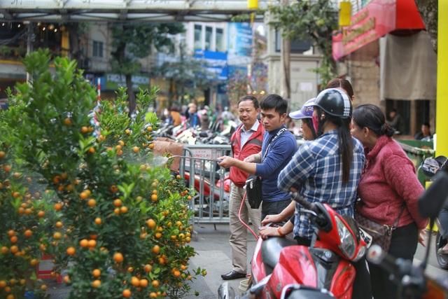 Dòng người chen chân mua sắm Tết ở chợ hoa lâu đời nhất Hà Nội - 2