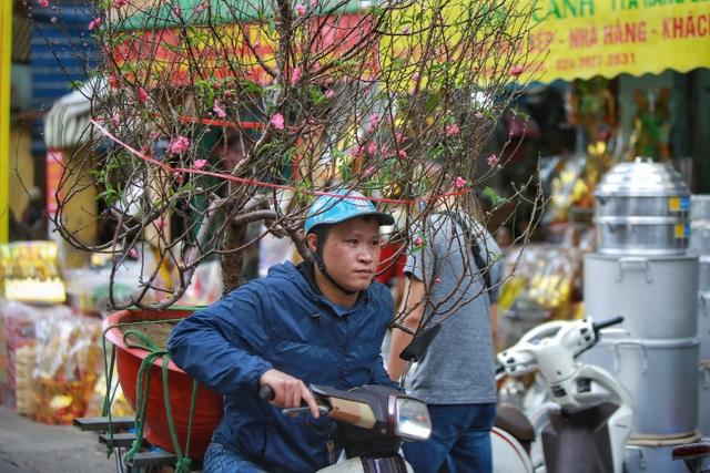 Dòng người chen chân mua sắm Tết ở chợ hoa lâu đời nhất Hà Nội - 6