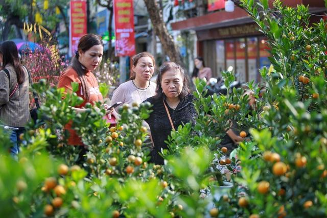 Dòng người chen chân mua sắm Tết ở chợ hoa lâu đời nhất Hà Nội - 11