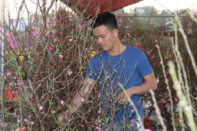 Mùa xuân phương Bắc theo chân hoa đào vào Tây Nguyên - 1