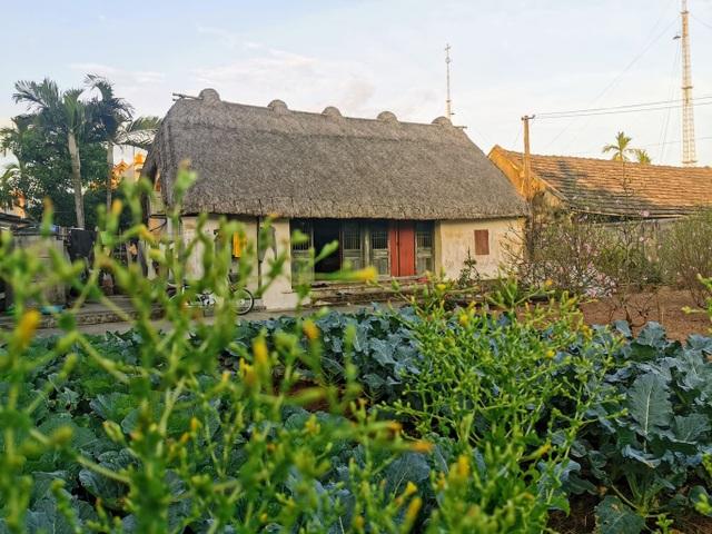 Mê mẩn với vẻ đẹp mộc mạc của ngôi nhà mái rạ ở miền quê gạo tám - 11