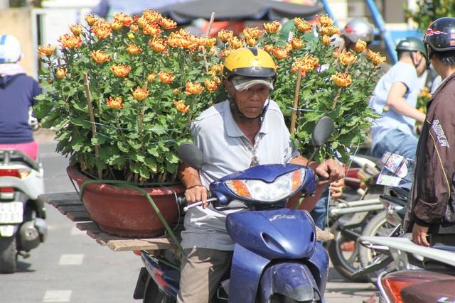 """Xe ôm kiếm """"bội tiền"""" nhờ chở hoa, cây cảnh Tết - 1"""