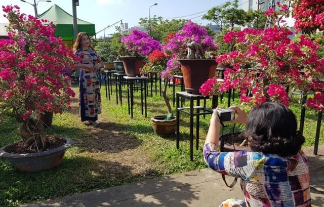 """Du khách xúng xính """"check-in"""" chợ hoa xuân Đà Nẵng - 7"""