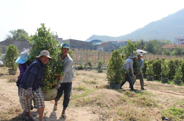 """Phú Yên: Người lao động """"còng lưng"""" kiếm tiền những ngày giáp Tết - 8"""