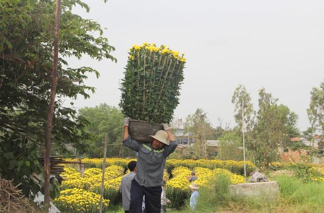 """Phú Yên: Người lao động """"còng lưng"""" kiếm tiền những ngày giáp Tết - 3"""