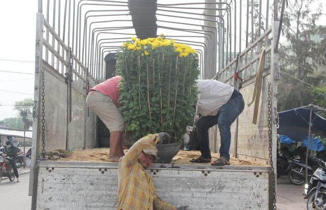 """Phú Yên: Người lao động """"còng lưng"""" kiếm tiền những ngày giáp Tết - 5"""
