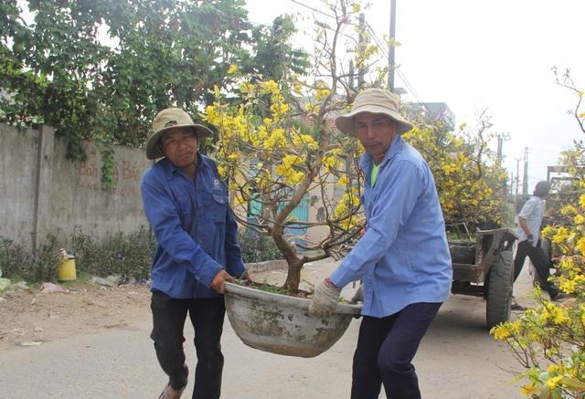 """Phú Yên: Người lao động """"còng lưng"""" kiếm tiền những ngày giáp Tết - 6"""