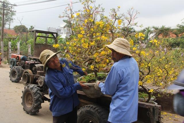 """Phú Yên: Người lao động """"còng lưng"""" kiếm tiền những ngày giáp Tết - 7"""