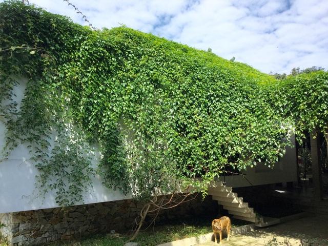 Nhà 70m2 chống ngập lụt ở Nghệ An gây sốt bởi thiết kế độc lạ - 8