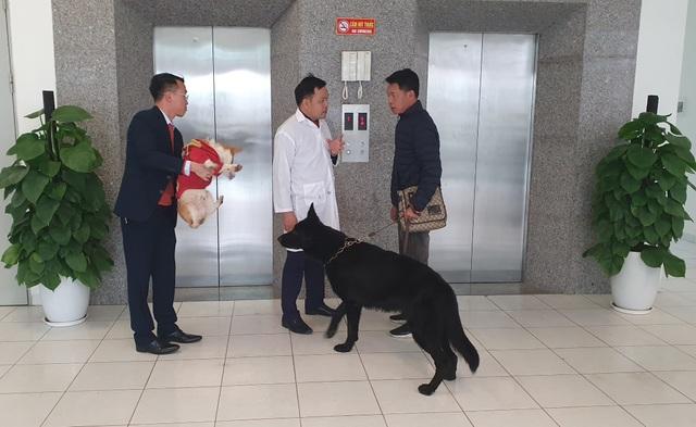 Người Hà Nội gửi thú cưng vào khách sạn để về quê ăn Tết - 1
