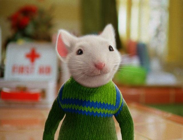 Năm Canh Tý, gặp những chú chuột thống trị màn ảnh thế giới - 6