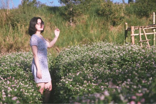 Đầu xuân, thiếu nữ đua sắc cùng hoa tam giác mạch xứ Bắc giữa lòng phố núi - 4