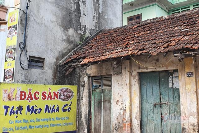 Làng doanh nhân nức tiếng một thời, bất ngờ biến thành làng tiểu hổ - 6