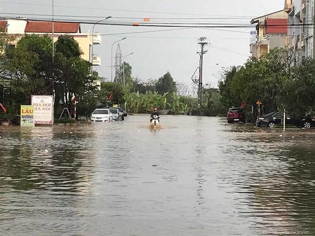 Quất cảnh tan tác, phố ngập thành sông sau cơn mưa đá chiều 30 Tết - 6